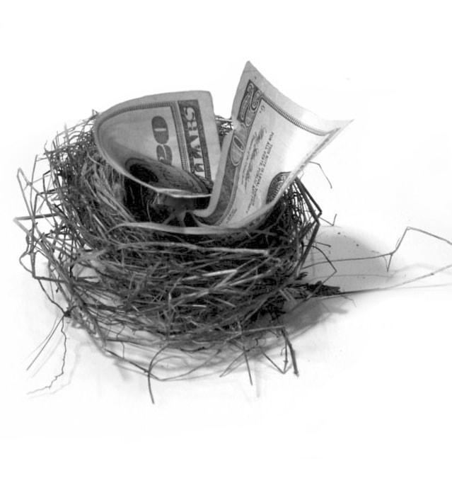 nest-egg-ii-1241466-639x705