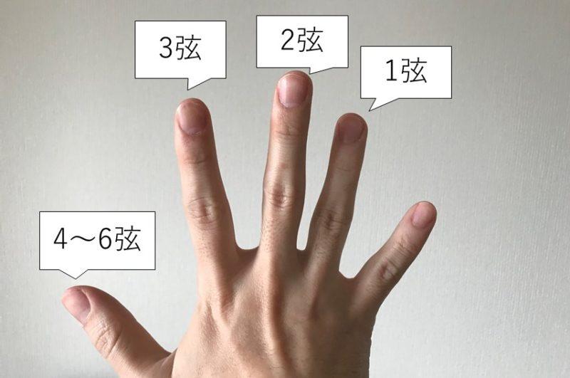フォーフィンガーの指の役割