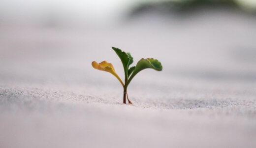 不安とは人が成長するためのきっかけ。不安との上手な付き合い方を解説