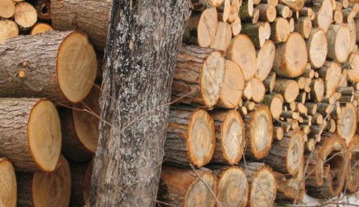 ギターって木材でそんなに音が変わるのか?木材別の特徴と代表機種を解説。