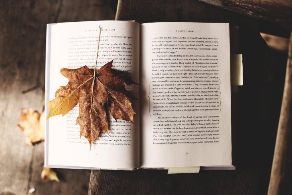 本と葉っぱ