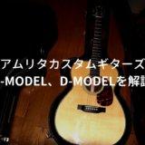 amrita F-model