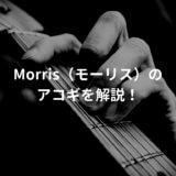 morris ギター解説