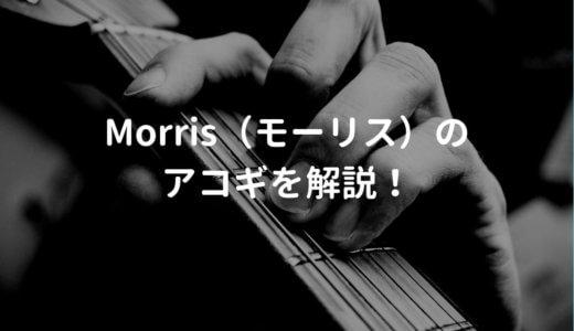 モーリス(Morris)のアコギを解説して、おすすめのギターを紹介する