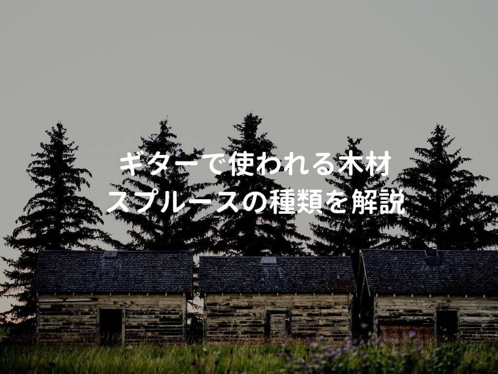 針葉樹林と家