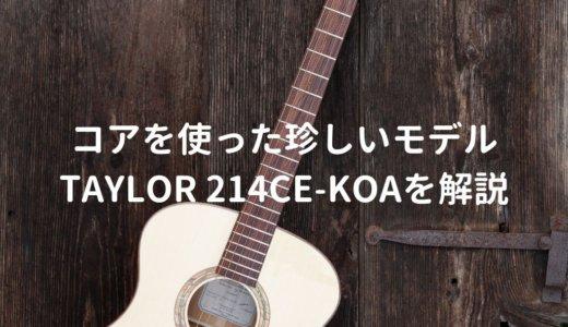 Taylor(テイラー)214ce-Koaをレビュー。10万円台で買える人気のエレアコ