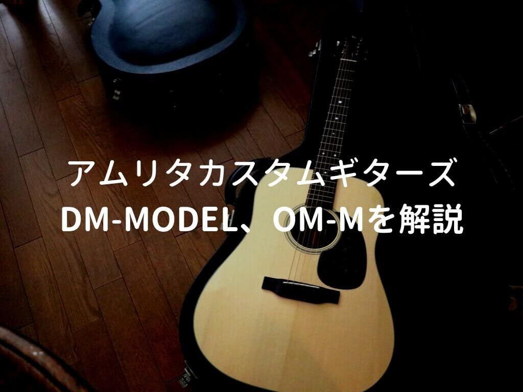 DM-Model