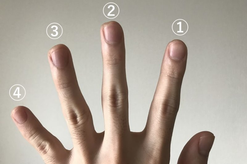 コードダイアグラムの表記に対応した左手の指