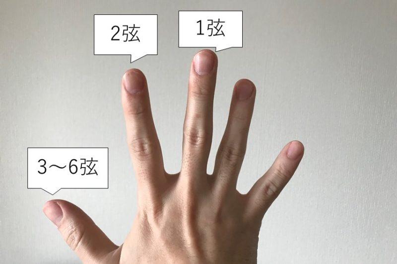 スリーフィンガーの指の役割