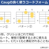 Caugの様々なコードフォーム