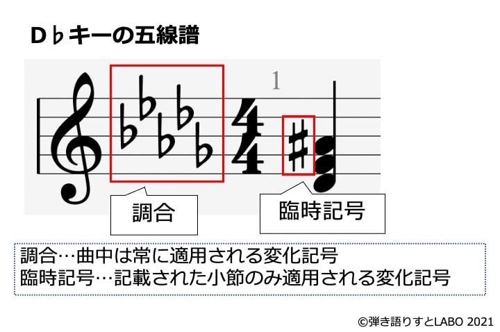 五線譜の調合と臨時記号の違いを解説した図解